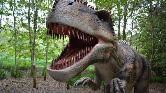 Descubren huevos de dinosaurios fosilizados