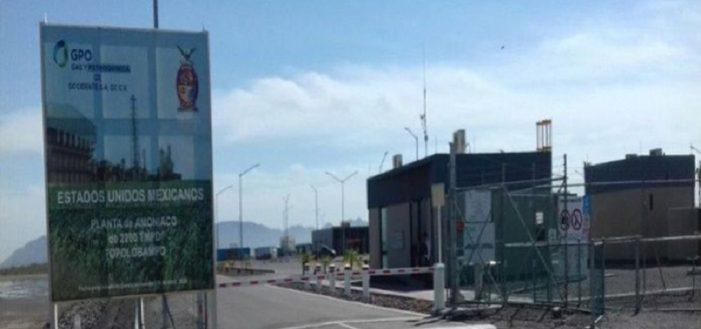 Gobierno de Sinaloa respalda planta de fertilizantes en Topo