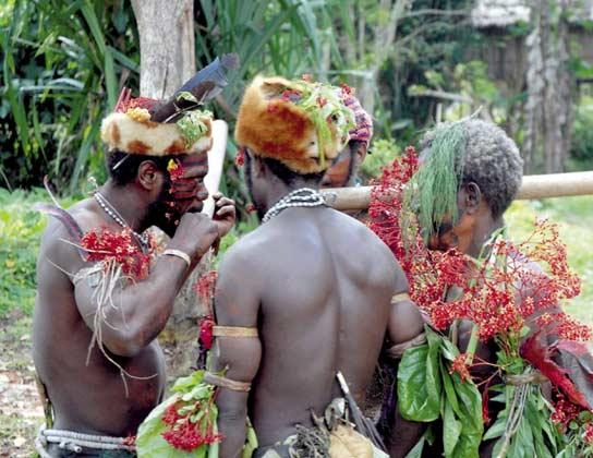 Las nuevas tribus