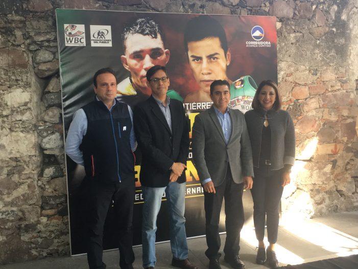 Habrá función de box internacional en Corregidora