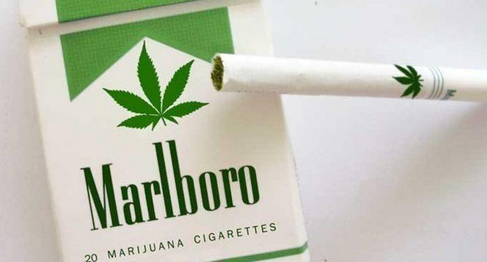 Marlboro… ahora de marihuana