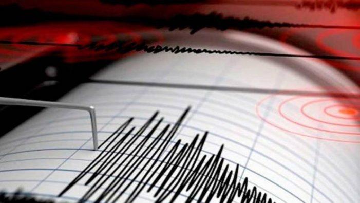 Reportan sismo De 5.1 grados en Guerrero